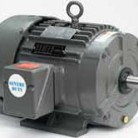 Leeson electric motor Catalog 171621.60 Model C256T34FW1AA 20HP, 3600 RPM, 256T Frame