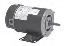 POOL & SPA MOTORS 1-PHASE AC